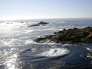 ocean_Esalen_Sally